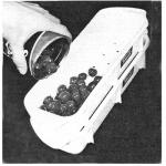Art.723 Sgocciolatore per frutta